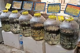 قیمت فروش و خرید تضمینی انواع زالوی طبی مرغوب در ایران