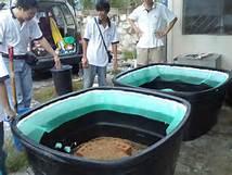 آموزش نحوه پرورش و روش تولید مثل زالو